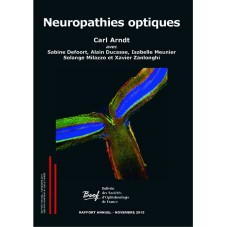 eBook Neuropathies optiques